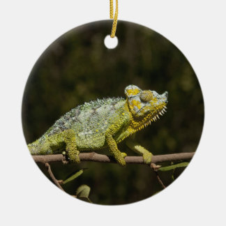 Flap-neck Chameleon Christmas Ornament