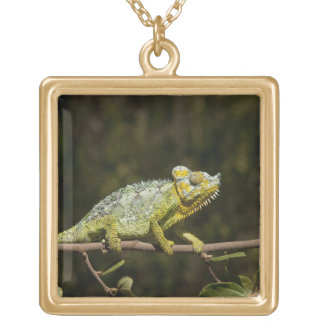 Flap-neck Chameleon Gold Plated Necklace
