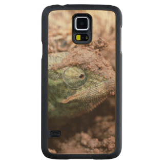 Flap-Necked Chameleon 2 Carved Maple Galaxy S5 Case