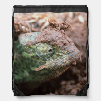 Flap-Necked Chameleon 2 Drawstring Bag