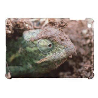 Flap-Necked Chameleon 2 iPad Mini Covers