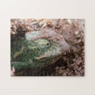 Flap-Necked Chameleon 2 Jigsaw Puzzle
