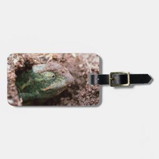 Flap-Necked Chameleon 2 Luggage Tag