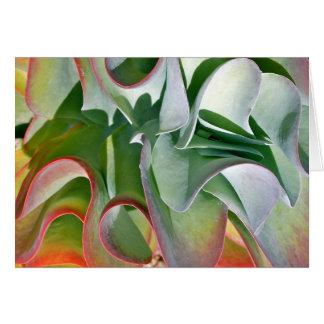 Flapjack plant note card by Debra Lee Baldwin