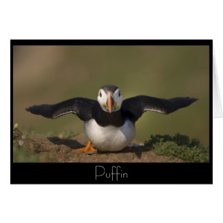 Flapping Puffin Greeting Card