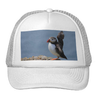 Flapping Puffin Hat