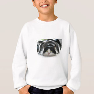 Flat Cat Sweatshirt