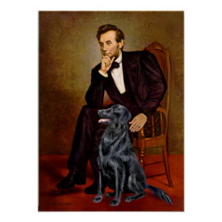 Flat Coated Retriever 1 - Lincoln Poster