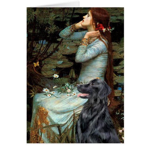 Flat Coated Retriever 1 - Ophelia Greeting Card