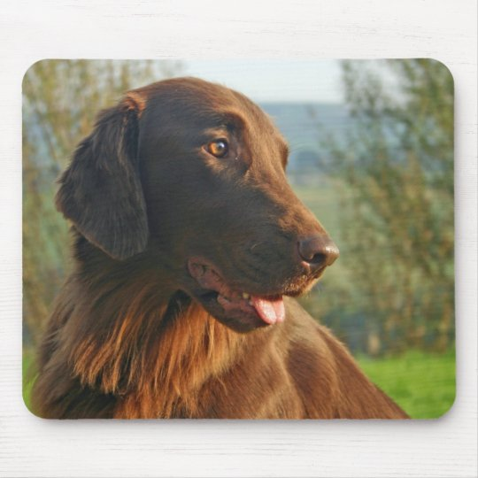 Flat Coated Retriever dog beautiful photo mousepad