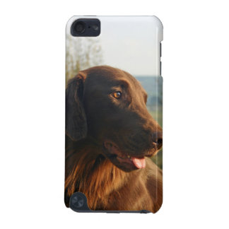 Flat Coated Retriever dog photo ipod touch 4G case iPod Touch 5G Case