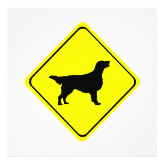 Flat Coated Retriever Dog Silhouette Crossing Sign Photographic Print