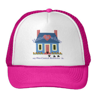 Flat-Coated Retriever Home Is Cap