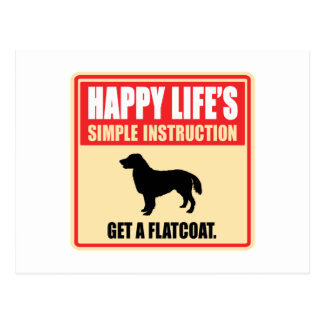 Flat-Coated Retriever Postcard