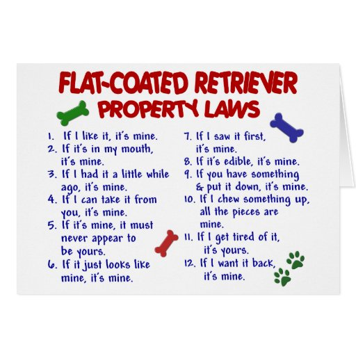 FLAT COATED RETRIEVER Property Laws 2 Card