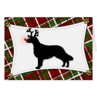 Flat Coated Retriever Reindeer Christmas Card