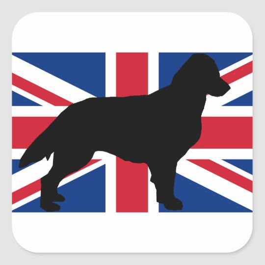 flat coated retriever silo england United_Kingdom. Square Sticker