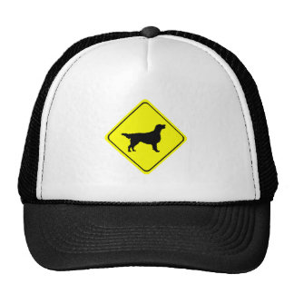 Flat-Coated Retriever Warning Sign Love Dogs Cap
