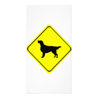 Flat-Coated Retriever Warning Sign Love Dogs Customized Photo Card