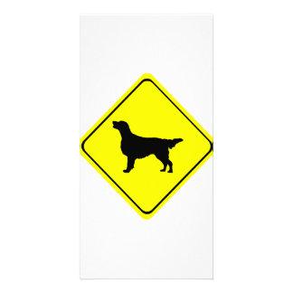 Flat-Coated Retriever Warning Sign Love Dogs Customized Photo Card