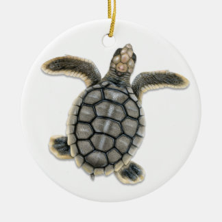 Flatback Sea Turtle Ornament