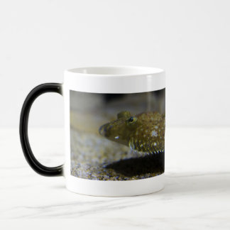 Flatfish 11 Oz Magic Heat Color-Changing Coffee Mug