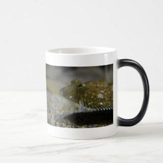 Flatfish Coffee Mugs
