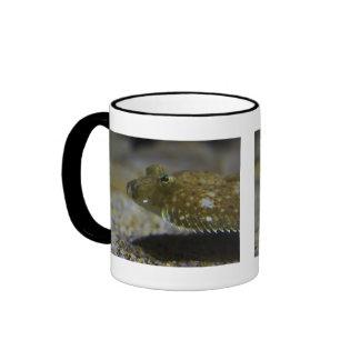 Flatfish Ringer Mug