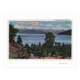 Flathead Lake, Montana Postcard