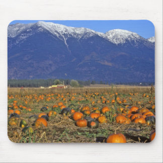 Flathead Valley Montana Pumpkin patch Mouse Mat