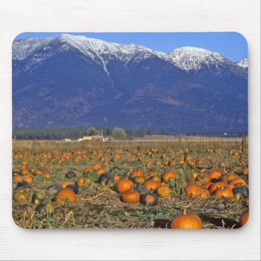 Flathead Valley Montana Pumpkin patch Mouse Pad