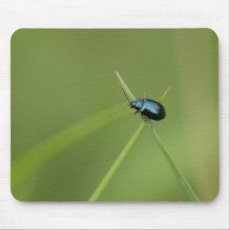 Flea Beetle Mouse Mat