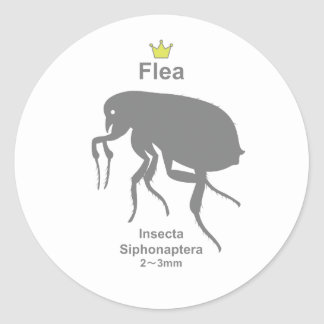 Flea g5 round sticker