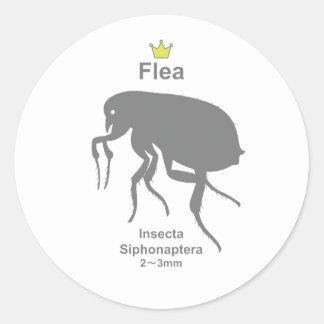 Flea g5 round sticker