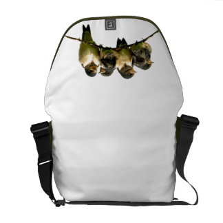 Fledglings Courier Bags