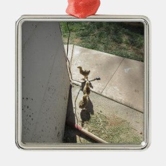 Fleeing Chicks Square Metal Christmas Ornament