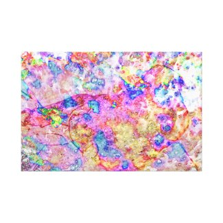 Fleeting Feeling Canvas Print
