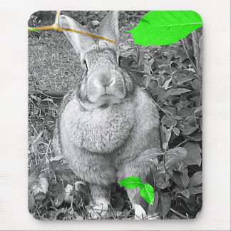 Flemish Giant Rabbit B & W with Green Leaves Mouse Mat