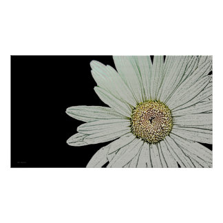 Fleur Blanche 36 x 20 Poster