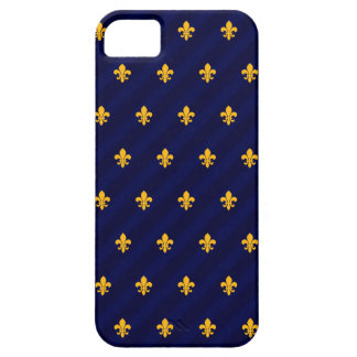 Fleur de Lys Orange-Blue iPhone 5 Cases