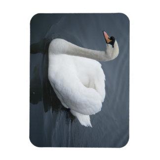 Flexi Magnet - Swan