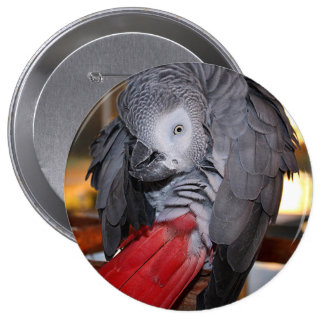 Flexible Congo African Grey Parrot with Red Tail 10 Cm Round Badge