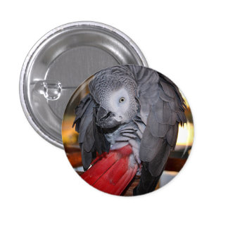Flexible Congo African Grey Parrot with Red Tail 3 Cm Round Badge