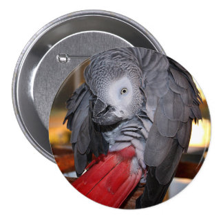 Flexible Congo African Grey Parrot with Red Tail 7.5 Cm Round Badge