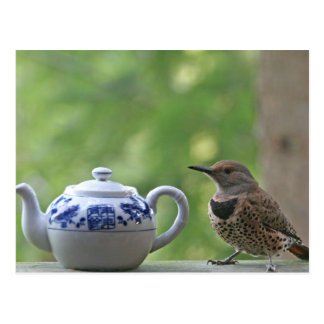 Flicker and Teapot Post Cards
