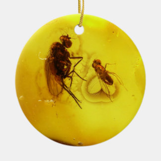 Flies inside amber round ceramic decoration