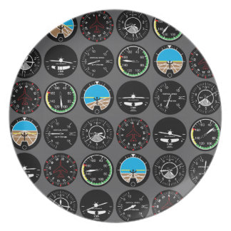 Flight Instruments Plate