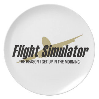 Flight Simulator Reason I get Up Party Plate