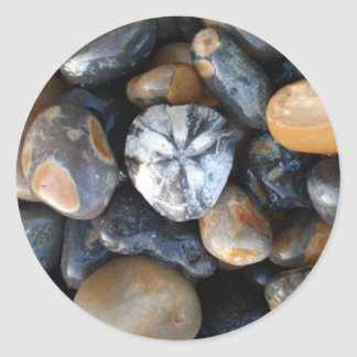 Flint fossil sea urchin round sticker
