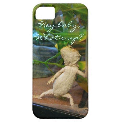 Flirty baby bearded dragon iPhone 5 cases